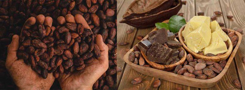 derivados del cacao