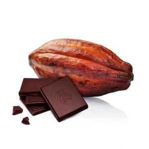 comprar tableta chocolate negro 100% gourmet leon