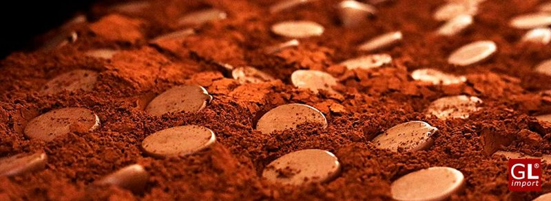 trufas con cacao en polvo