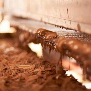 trufas a granel para bomboneria pasteleria panaderia gourmet leon