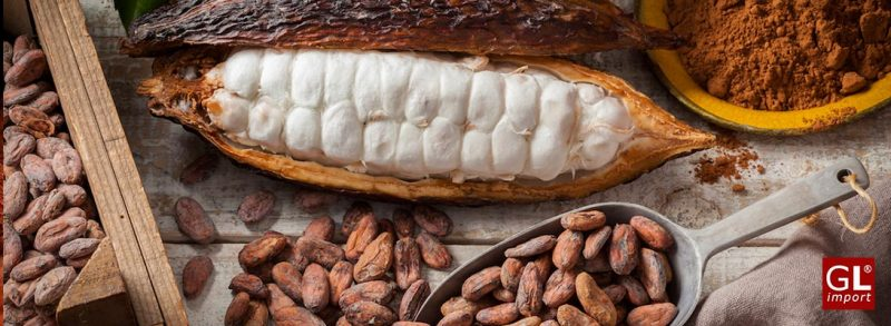 trufas de chocolate negro cacao espolvoreado l'heritage gourmet